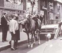 PAn officer and his mount in Montréal, in the early 1960s